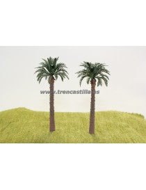 LOTE 2 PALMERAS, TRENCASTILLA TCY200