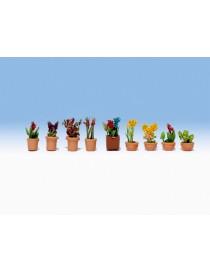 SET 9 PLANTAS EN MACETAS - LASER, NOCH 14080