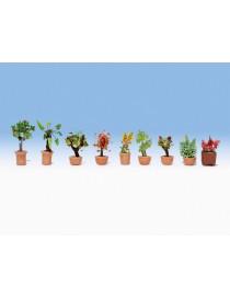 SET 9 PLANTAS EN MACETAS - LASER, NOCH 14082