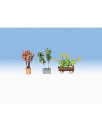 SET 3 PLANTAS EN JARDINERAS- LASER, NOCH 14014